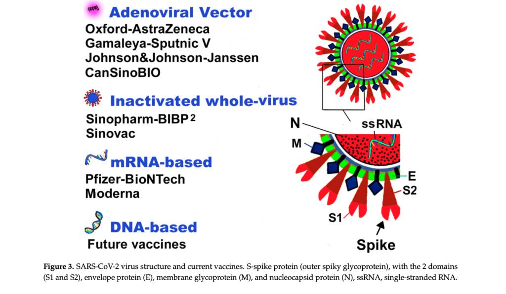 koronaviruso vakcinu tipai moderna pfizer astrazeneca