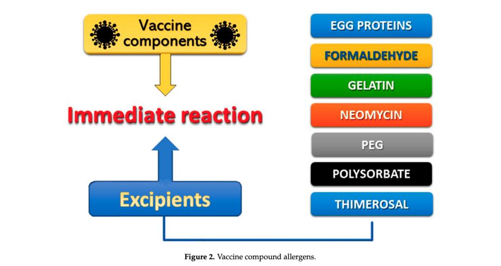 vakcinos alergines reakcijos